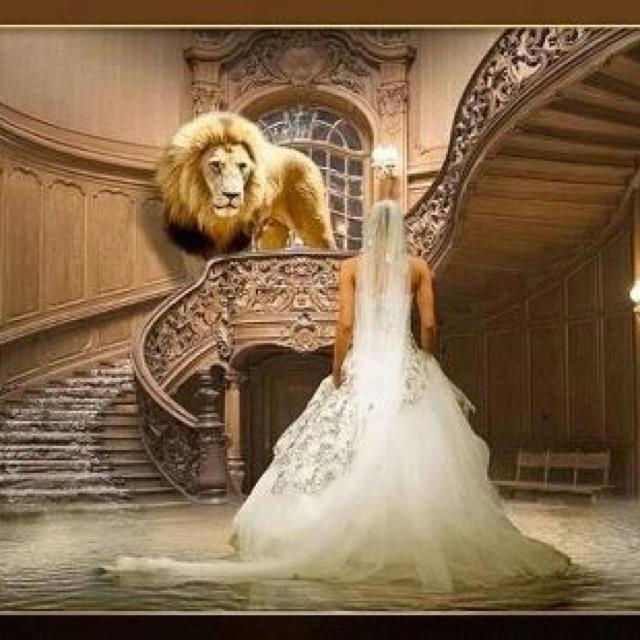 5df0ee8e24d631dda539d7280fcad6b5--bride-of-christ-lion-of-judah