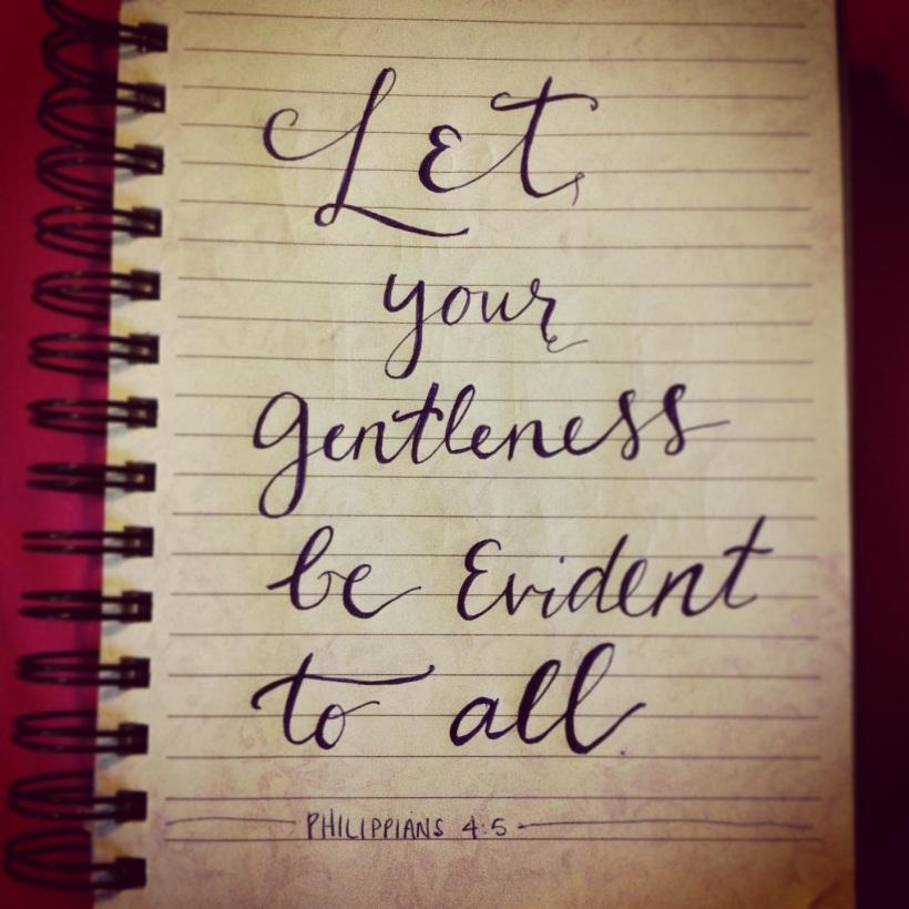 Gentleness-Phil-45