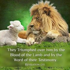 c4016ba7e2b2ce55184f0edf694d9dd8--the-lion-lamb